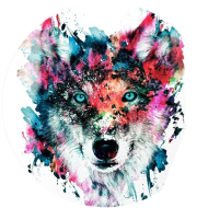 Wolf_front_grande